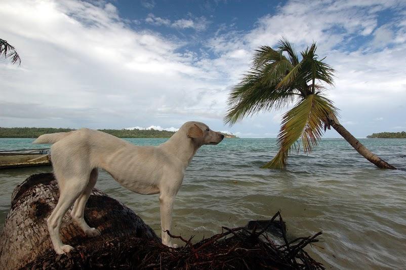 Мадагаскар, остров Св.Марии